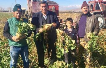 CHP'li Gürer: Pancar çiftçisi ekimden vazgeçiyor!