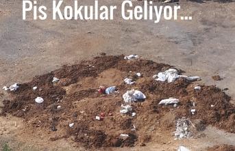 Maltepe Belediyesi,Cevizli Mahallesi Koktu!
