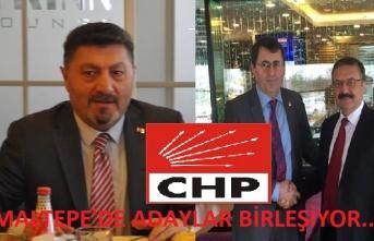 Oklar Ali Cengiz Erol'dan Yana