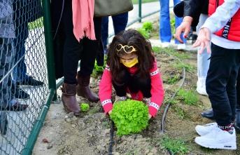 Küçük Bahçıvanlar İlk Hasatını Topladı